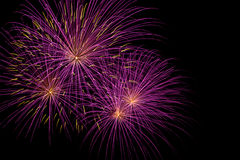 Beautiful color of firework Royalty Free Stock Photography