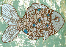 Beautiful color Fish Royalty Free Stock Photo
