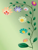 Beautiful color flowers tree  Royalty Free Stock Image