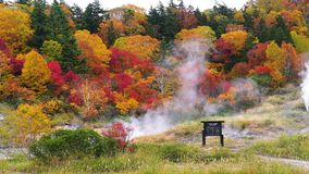 Beautiful color of foliage in autumn at the mountain of Fuke no Yu onsen