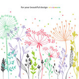 Beautiful color grass silhouette Stock Photos