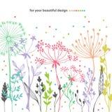 Beautiful color grass silhouette Stock Photos