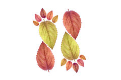 Beautiful color leaf footprint Stock Images