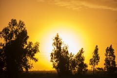 Beautiful color sunset royalty free stock photo