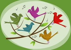Beautiful colored birds on branch. Spring or summer illustration with birds. Singing birds on branch. Cute birds. Vector image with animals. Vector eps10 royalty free illustration