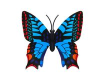 Beautiful colored butterfly Royalty Free Stock Photography