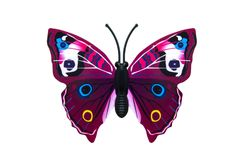 Beautiful colored butterfly Stock Images