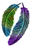 Beautiful colored feathers for the catcher of dreams Stock Photo