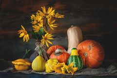 Beautiful colored harvest pumpkin Halloween, with a big snail crawling . Copy the place. Royalty Free Stock Photography
