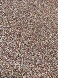 Little stones texture on Bulevard. Beautiful colored mosaic stones Stock Photo