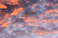 Beautiful Colored Sunset Stock Photography