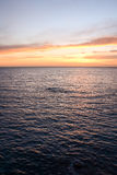 Beautiful Colored Sunset Royalty Free Stock Photo