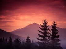 A beautiful, colorful, abstract mountain landscape in a mystic purple and orange tonality. Stock Images