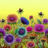 Beautiful colorful aster flowers with green leaves on yellow background. Seamless floral pattern. Watercolor painting. Hand drawn and painted illustration royalty free illustration
