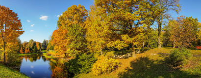 Beautiful colorful autumn. Beautiful colorful autumn leaves in the city park Stock Images