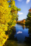 Beautiful colorful autumn. Beautiful colorful autumn leaves in the city park Royalty Free Stock Images