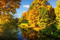 Beautiful colorful autumn. Beautiful colorful autumn leaves in the city park Royalty Free Stock Photography