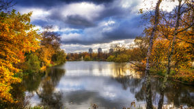 Beautiful colorful autumn. Beautiful colorful autumn leaves in the city park Stock Photography