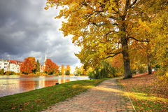 Beautiful Colorful Autumn park in  Luebeck Royalty Free Stock Photos
