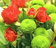 Bouquet with red roses Stock Photos