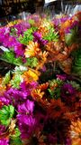 Beautiful colorful bunch of flowers royalty free stock images