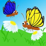 Butterfly on a flower- vector illustration, eps vector illustration