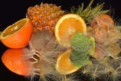 Beautiful citrus fruits close up on the mirror royalty free stock photography