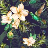 Beautiful colorful colibri and plumeria flowers on dark background. Exotic tropical seamless pattern. Watecolor painting. Hand painted illustration. Wallpaper Vector Illustration