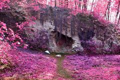 Beautiful and colorful fantasy landscape in an asian purple infrared photo style stock images