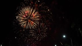 Beautiful colorful firework display for celebration happy. Fireworks in the city
