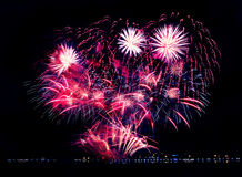 Beautiful  celebrate firework Stock Photography