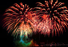 Beautiful  firework Royalty Free Stock Image