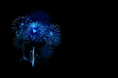 Beautiful colorful firework Royalty Free Stock Photos