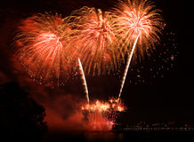 Beautiful red  firework Royalty Free Stock Image