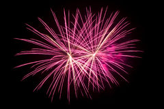 Beautiful Colorful fireworks over dark sky Royalty Free Stock Photography