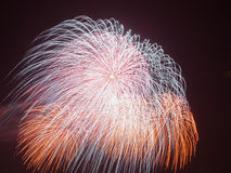 Beautiful colorful fireworks Royalty Free Stock Photos