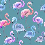 Beautiful colorful flamingo on blue background. Bright exotic seamless pattern. Watercolor painting. Hand drawn and painted illustration. Fabric, wallpaper royalty free illustration