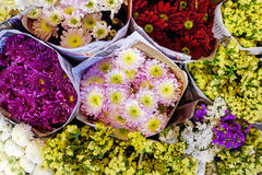 Beautiful colorful flower for sale Royalty Free Stock Photos