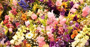 Beautiful colorful flowers bouquet stock photo