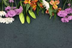 Beautiful Colorful Flowers Bouquet Border Over Black Dark Texture Background Royalty Free Stock Photo