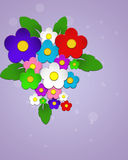 Beautiful colorful flowers. Beautiful colorful flowers on purple background Stock Photography