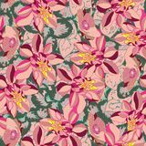Beautiful and colorful flowers seamless pattern vector royalty free stock photography