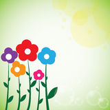 Beautiful colorful flowers spring background Stock Images