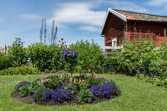Beautiful garden in summer on the Swedish countryside. Beautiful and colorful garden and an old red barn on the countryside in Sweden on a bright sunny summer royalty free stock photo