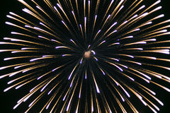 Beautiful colorful holiday fireworks Stock Image