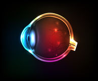 Beautiful colorful human eye Stock Image