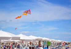 A beautiful colorful kite Fly over the beach umbrellas and deckchairs. A wonderful summer on the Italian coast between Good food, sun, sea and beach royalty free stock image