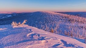 A beautiful colorful morning on the mountain peak of Lusen in Bavaria. Blue and red coloring of the landscape in the morning light Stock Photo