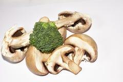 Beautiful colorful mushrooms close up royalty free stock photography