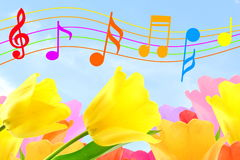 Beautiful colorful Music notes in sky and flower background Stock Photo